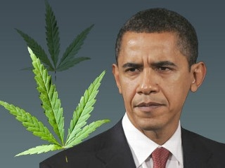 Obama ja kannabis. Kuva: ABC News